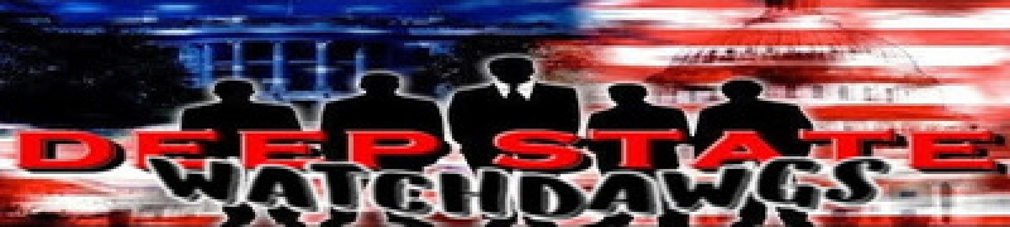 DEEP STATE WATCHDAWGS Media And News Sharing org./group/inc.